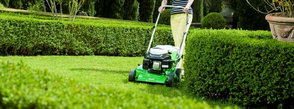 Gartenbetreuung nach Ihren Wünschen